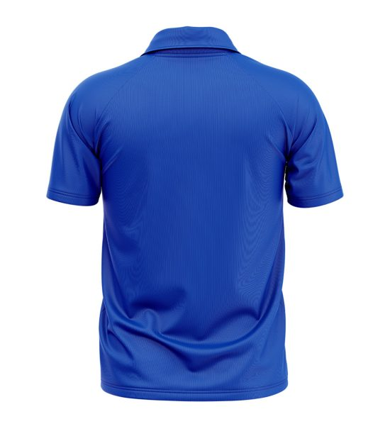 Indian Cricket Team Jersey Online   Indian Team T Shirts   Printed Indian T Shirts